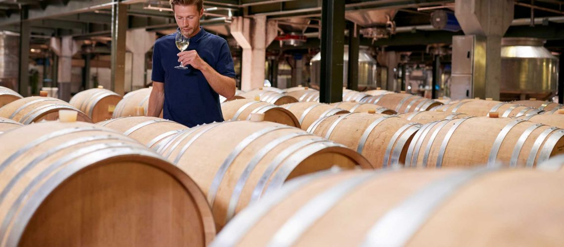 young-man-wine-tasting-in-a-wine-factory-warehouse-PV26KJU
